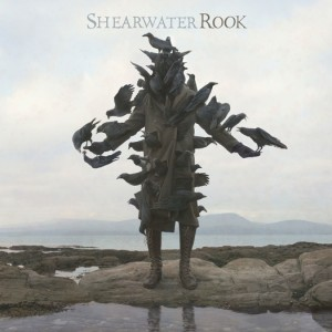 Shearwater, Rook