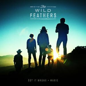 wild-feathers