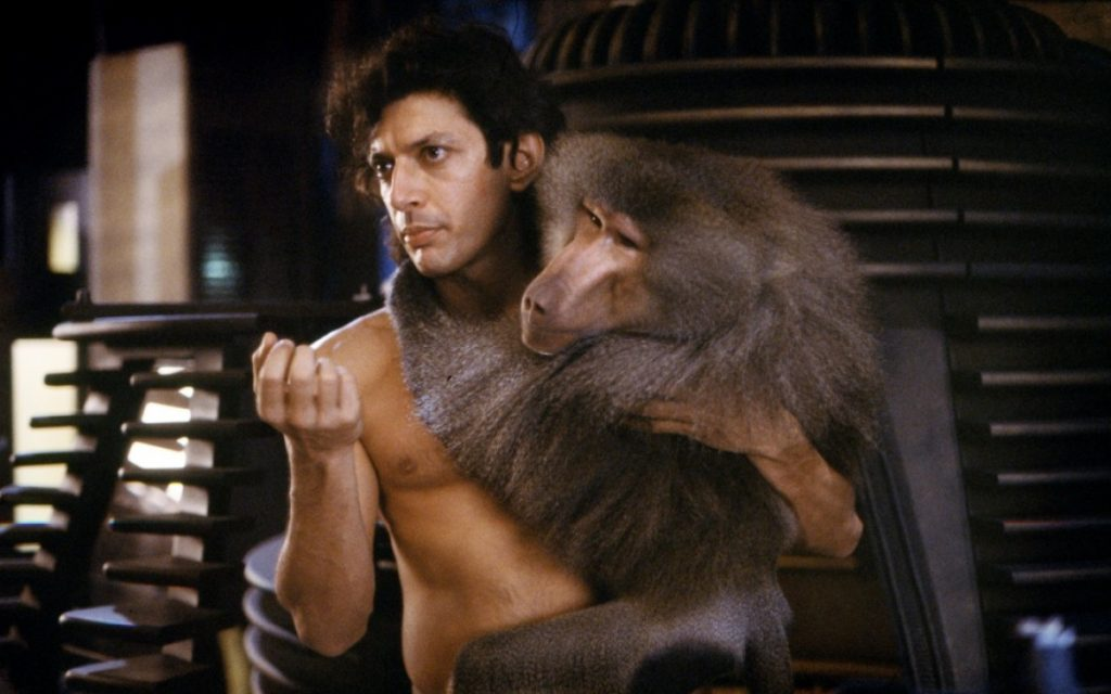 the fly jeff goldblum baboon